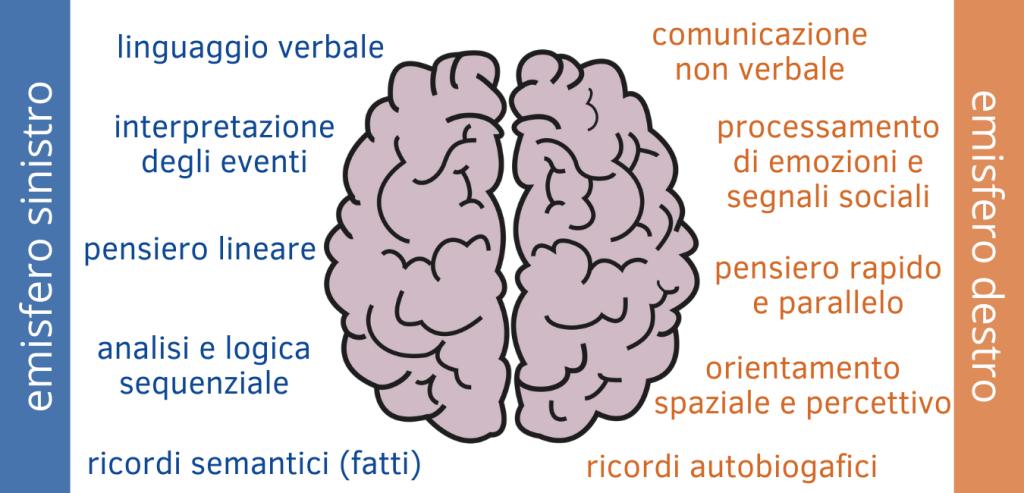funzioni emisferi cerebrali destro e sinistro